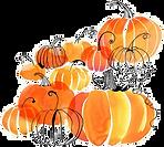 kisspng-pumpkin-pie-watercolor-painting-new-hampshire-pump-citrouilles-5b7b3fb6dd8540.3579