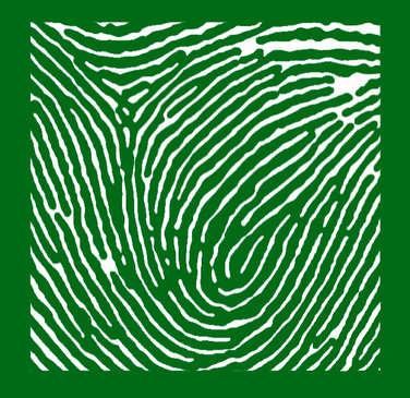 GREEN- WHITE