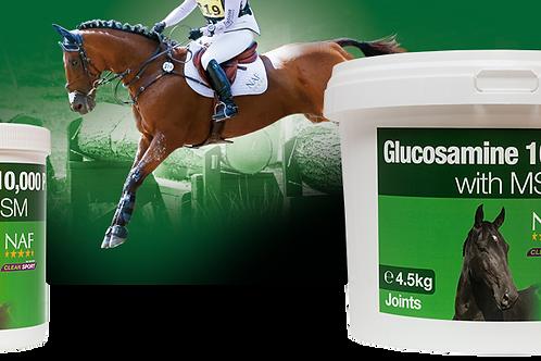 Glucosamine 10000 Plus with MSM