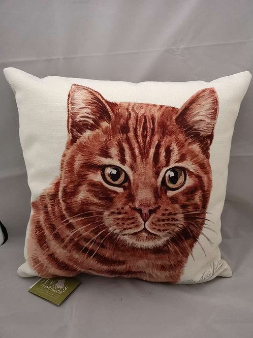 Boston WD ginger cat cushion