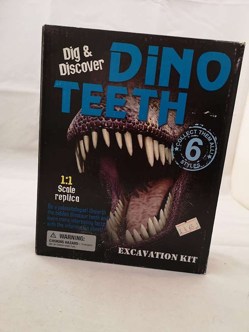 Dig and discovered dino teeth