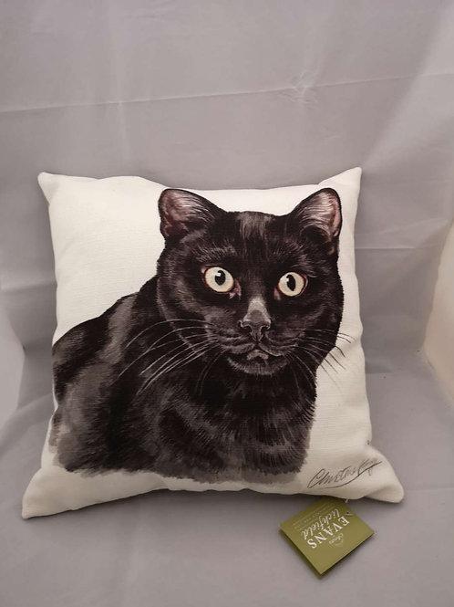 Boston WD black cat cushion