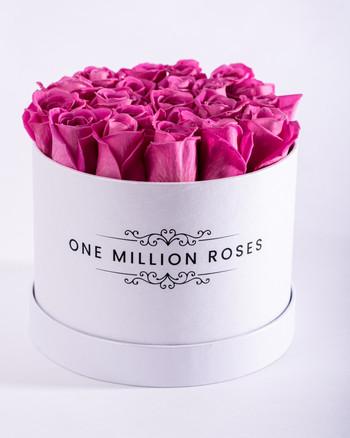 onemillionroses-4.jpg