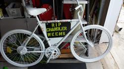 RIP Chandler Weems.jpg