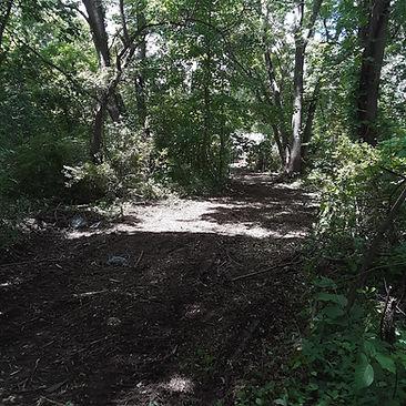 2 Church path 3.jpg