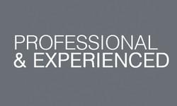 Professional3D
