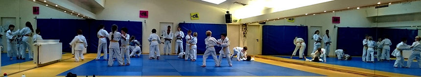 Judo Frechen