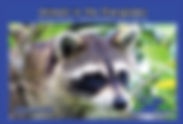 cover Animals in the Everglades.jpg