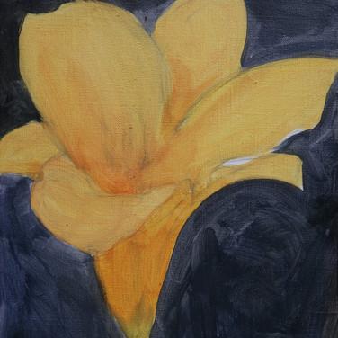 Floral 2021 - 3