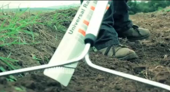 English Saffron planting timelapse, featured on the Daily Mail