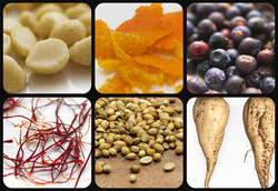 Ingredients in our Gin