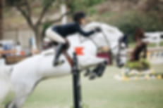 equestrian rider jumping with white hors
