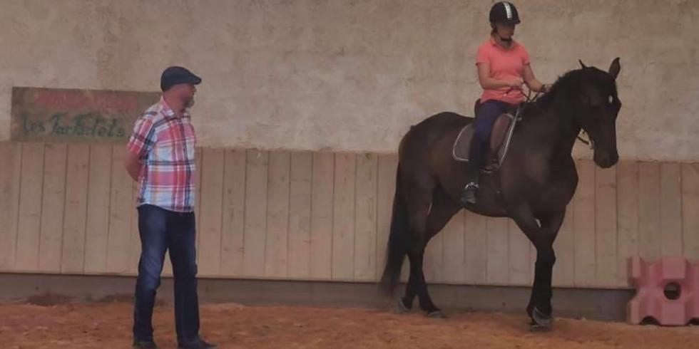 Stage de Langage Equestre