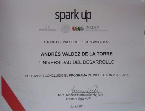 Diploma Spark UP.jpg