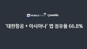 `대한항공+아시아나` 앱 시장 점유율 66.8%