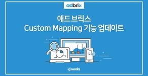 애드브릭스, Custom Mapping 기능 업데이트