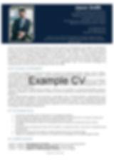 Example of CVforLIfe CV