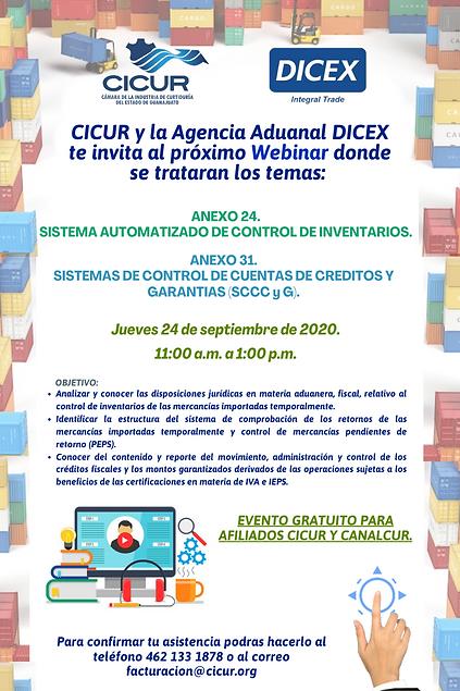 Invitación_Webinars_Anexo_24_y_31_-_CIC