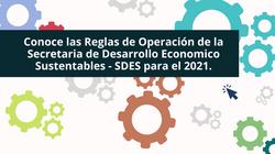 REGLAS DE OPERACION 2021