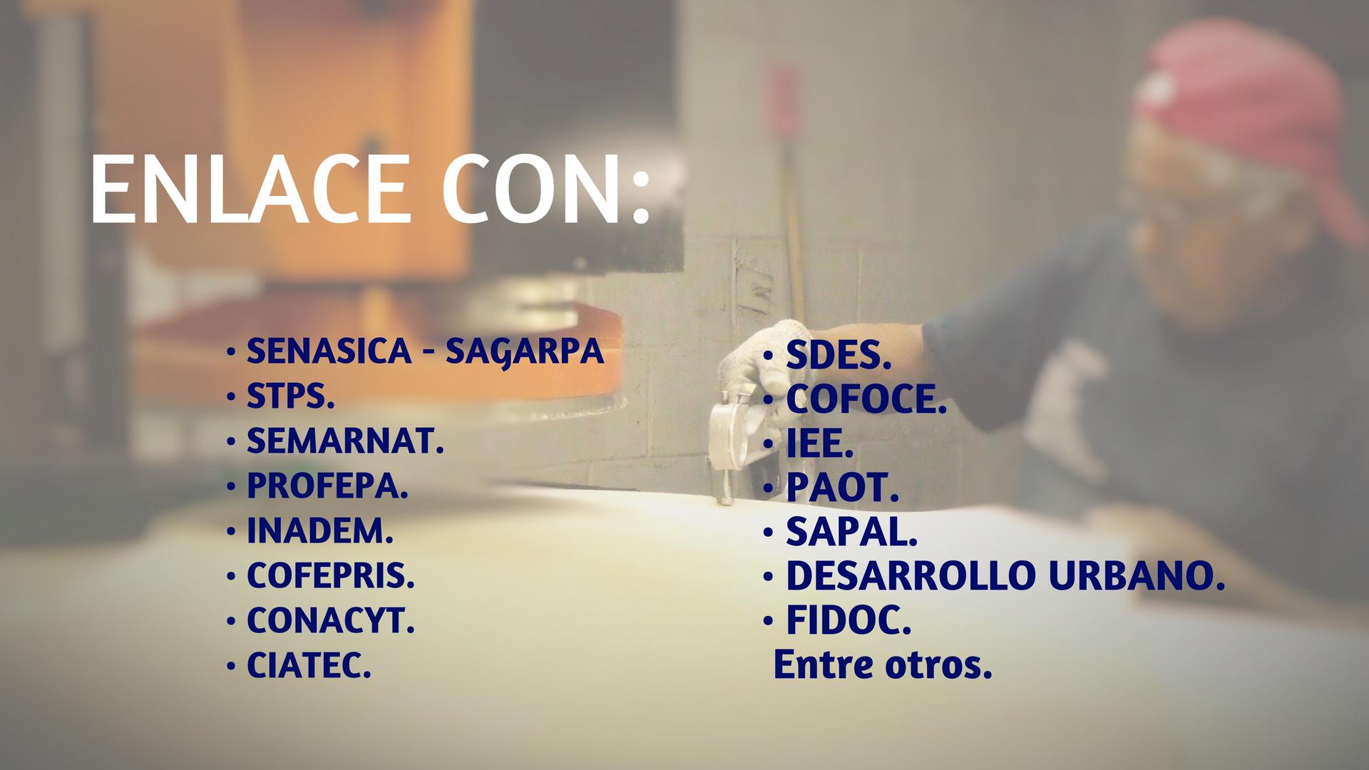 ENLACE CON