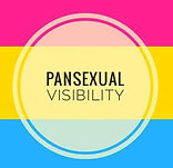 pan visibility day.jpg