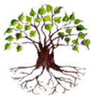 bodhitree-banner_0.png