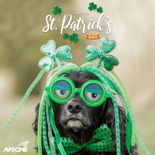 St Patricks Day 2021Dog