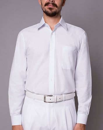 Camisas masculins
