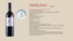 Merlino 13 web.png