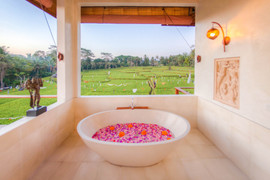 Flower Petal Bath with view