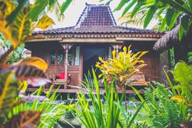 Darshana Bungalow Garden View