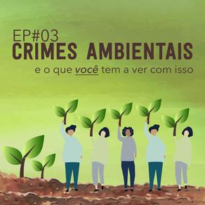 EP#03 Crimes Ambientais E O Que Você Tem A Ver Com Isso