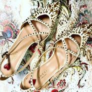 Maravilhoso esse sapato Gucci com vário