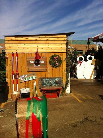 Dallas Christmas Tree Lot- North Pole Farms
