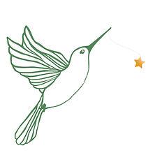 colibri avec etoile.jpg