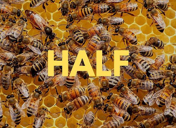 Hiveshare Half Hive Share