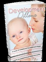 DevelopmentDilema_High.png