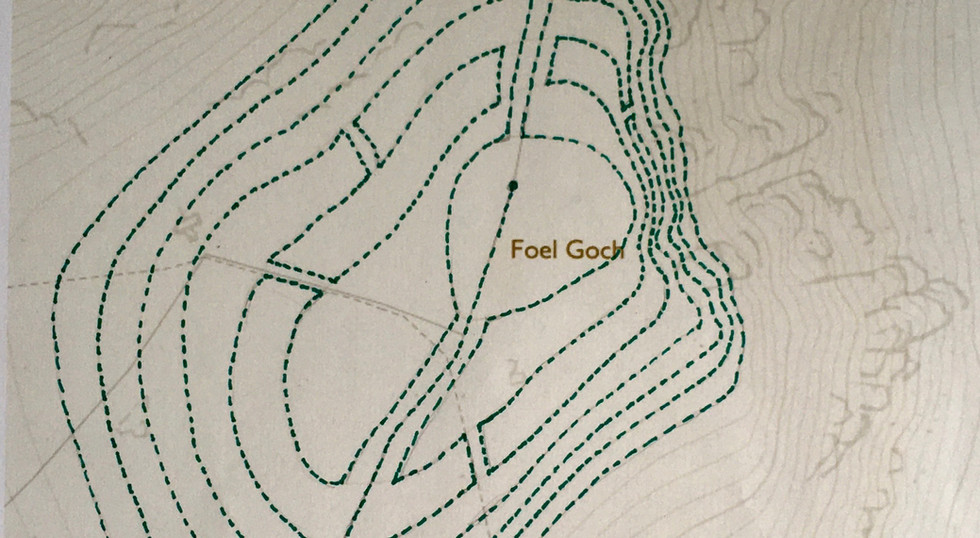 Labyrinth: map 2, 2020