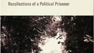 Beyond The Blue Gate. Recollections of a Political Prisoner
