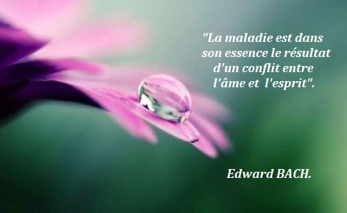 Relation d'aide citation Edward Bach