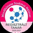matrica_regisztralt_tanar.png