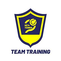 team badge.png
