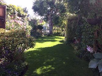 Aylward Road Garden 2.JPG