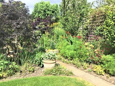 Ann's garden 1.jpg