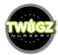 Logo of Twigz Nursery