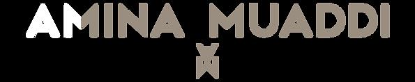 AMINA LOGOb 2.png