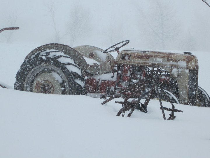 tractor in the snow.jpg