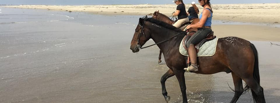 Roscoe beach ride