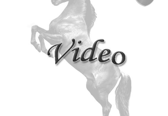 Lolita video flat
