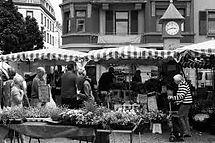 farmers-market.jpeg